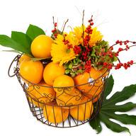 오렌지빛 과일바구니C