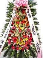 축하3단HIT39(멋진출발을위하여!!^^)
