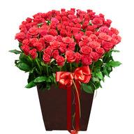 꽃길~(100송이)